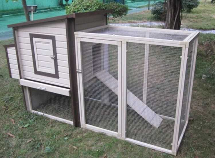 Need a Chicken Coop- Look at Australian Chicken Coops
